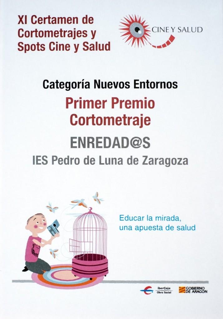Primer Premio de Cortometrajes de Cine y Salud 2013